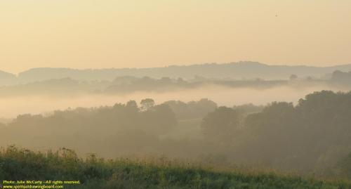 Foggy hillsides--photo Julie McCarty
