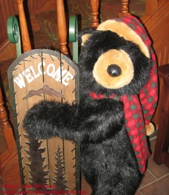Christmas bear--photo Julie McCarty--Eagan MN