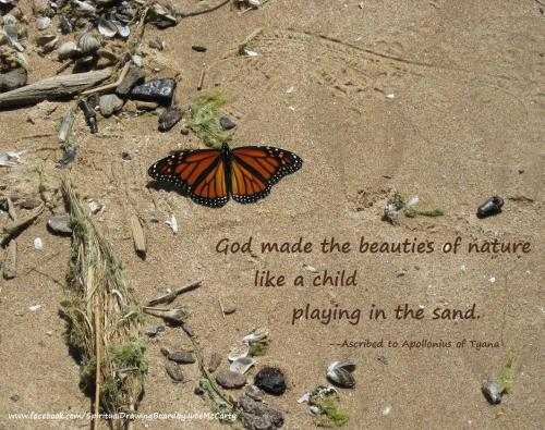 Butterfly on sandy beach with Apollonius saying--Julie McCarty
