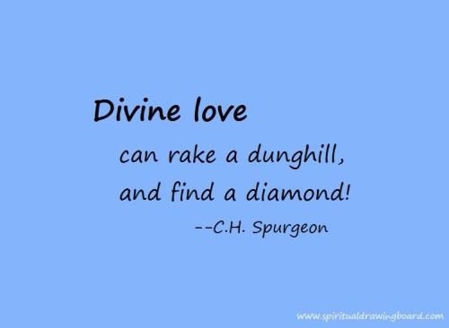 Divine love can rake a dunghill--Spurgeon